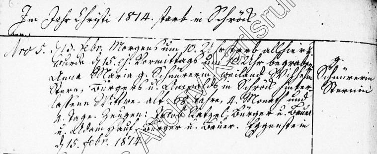 Tod von Wilhelm Sterns Witwe Anna Maria