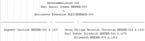 Stern-Goethe